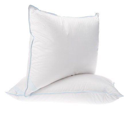 Northern Nights Set of 2 Standard 550FP All Down Pillows