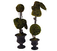 Set of 2 Bunny Topiaries by Valerie - H199067