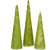 Set of 3 Illuminated Iced Glass Cone Trees by Valerie - H211667