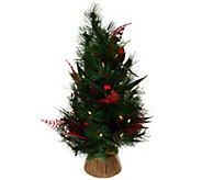 ED On Air 24 Mixed Pine Tabletop Tree w/ Ornaments by Ellen DeGeneres - H209568
