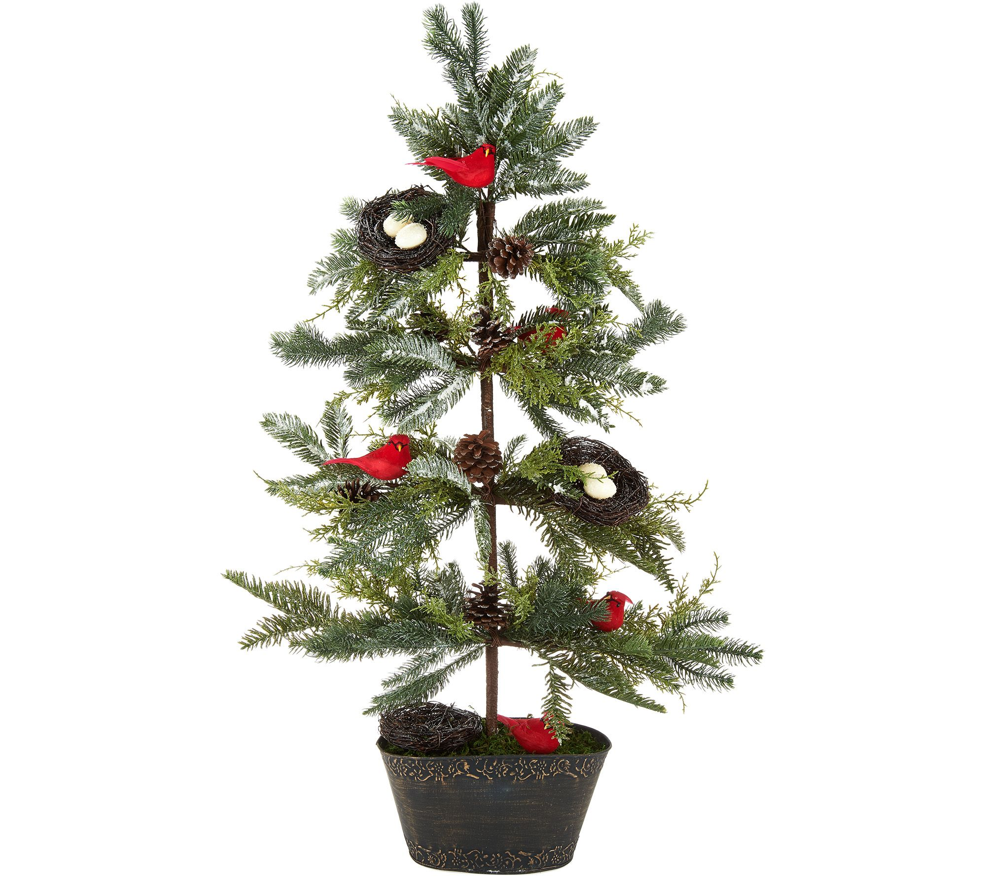 Valerie Parr Hill — Christmas Trees — Christmas — Holiday — For ...