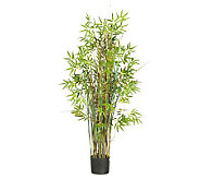 5 Grass Plant Bamboo by Nearly Natural - H357368