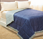 Coleman 400TC Year Round Down Alt. Reversible FL/QN Quilted Blanket - H205169