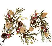 4 Golden Glittered Beaded Fruit & Pinecone Garland - H211869