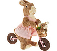 Anniversary Spring Sisal Sister Bunny on Bike by Valerie - H213769