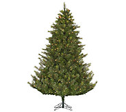 7.5 Prelit Modesto Pine Tree w/ LED Lights byVickerman - H287669