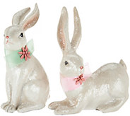 Set of 2 Sitting and Standing Sugared Bunnies with Ribbon - H210870