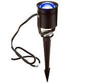 BlissLights LED Accent Flood Light with Ground Stake - H200071
