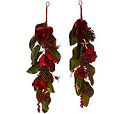 As Is Set of 2 Glittered 25 Magnolia, Pinecone & Berry Swags - H208371