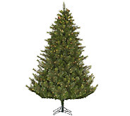 10 Prelit Modesto Mixed Pine Tree by Vickerman - H287671