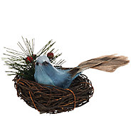 Plow & Hearth Set of 6 Christmas Birds in Nest with Clips - H205972