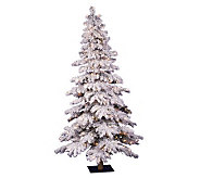 6 Flocked Spruce Prelit Tree by Vickerman- Clear - H171473