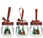 Set of 3 Jolly Jar Ornaments with Gift Bags by Valerie - H206873