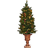 Bethlehem Lights 4 Indoor/Outdoor Lit Canterbury Urn Tree - H209573