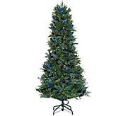 As Is ED On Air Santas Best 9 Blue Royal Spruce by Ellen DeGeneres - H214673