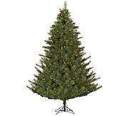 10  Prelit Modesto Mixed Pine Tree w/ LED Lights by Vickerma - H287673