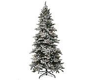As Is Bethlehem Lights 7.5 Woodland Pine Christmas Tree - H210274