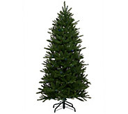 As Is ED On Air Santas Best 5 Stratford Spruce Tree - H211074