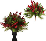 Choice of Berry & Pine Urn Filler or Arrangement in Urn by Valerie - H212774
