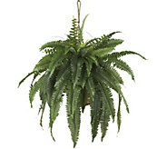 Large Boston Fern Hanging Basket by Nearly Natural - H292174