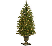 National Tree Company 4 Lit Dunhill Fir Entrance Tree - H294374
