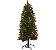 Bethlehem Lights 5 Canterbury Slim Christmas Tree - H208575