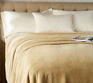 Charisma Velvet Lux 350 GSM Queen Blanket - H213075