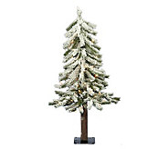 2 Prelit Flocked Alpine Tree with Clear Lightsby Vickerman - H183976