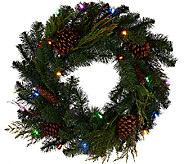 ED On Air 24 Lit Pinecone Wreath by Ellen DeGeneres - H206276