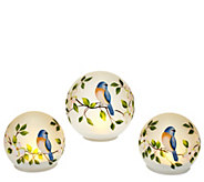 Set of 3 Handpainted Frosted Glass Spheres by Valerie - H205077