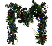 ED On Air 6 Lit Pinecone Garland by Ellen DeGeneres - H206277