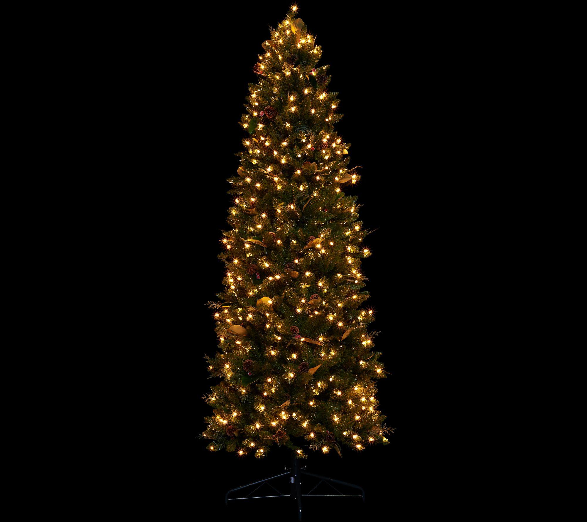 Bethlehem Lights 7 5 Canterbury Slim Christmas Tree Page 1 — QVC