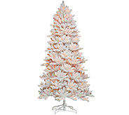 As Is Bethlehem Lights 6.5 Hudson Flocked Christmas Tree - H210277