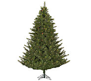 12 Prelit Modesto Mixed Pine Tree w/ LED Lights by Vickerman - H287677