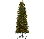 Bethlehem Lights 9 Canterbury Slim Christmas Tree - H208578
