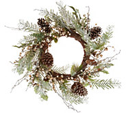 Champagne Eucalyptus Berry 20 Wreath by Valerie - H212578