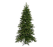 6-1/2 Prelit Balsam Fir PE Tree w/Clear Lightsby Vickerman - H183980