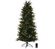 As Is ED On Air 6.5 Bay Leaf Tree w/ Berries & Pinecones - H208180