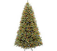National Tree Company 10 Lit Downswept DouglasFir Tree - H294380