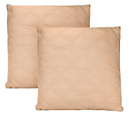 Phoebe Howard Home Set of Two Filled Quilted Euro Shams - H200281