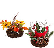Set of 2 Illuminated Nests w/ Birds & Flowers by Valerie - H211881