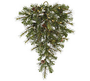 32 Prelit Modesto Mixed Pine Teardrop by Vickerman - H287681
