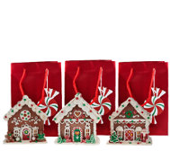 Set of 3 Mini Gingerbread Houses with Gift Bags by Valerie
