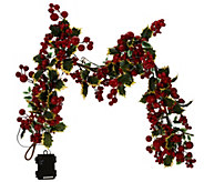As Is 20 Illuminated Berry Wreath or 4 Garland by Valerie - H207682