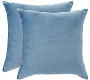 Sure Fit Plush Comfort (2) 18 x 18 Decorative Pillows - H209782