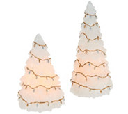 Set of 2 Candle Impressions Flameless Tree Candles with Light Strands - H203083