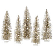 As Is Set of 5 Decorative Bottlebush Trees by Valerie - H208084