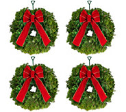 Del. Week 11/21 Set of 4 Fresh Mini Balsam Wreaths by Valerie - H209784