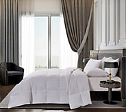 Blue Ridge Luxury 700TC Hungarian Goose Down F/QN Comforter - H285284