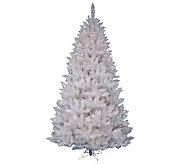 5-1/2 White Sparkle Spruce Tree w/ Clear Dura-Lit Lights - H364084